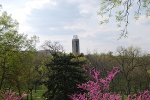 Campanile on the campus of the University of Kansas, surrounded by trees where once there were none. Photo by Cathy Sherman.
