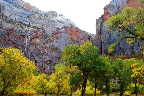 A thunderstorm rolled in, splashed Zion Canyon with a little rain, and soon transient waterfalls streamed in narrow ribbons down the sheer walls of the canyon.