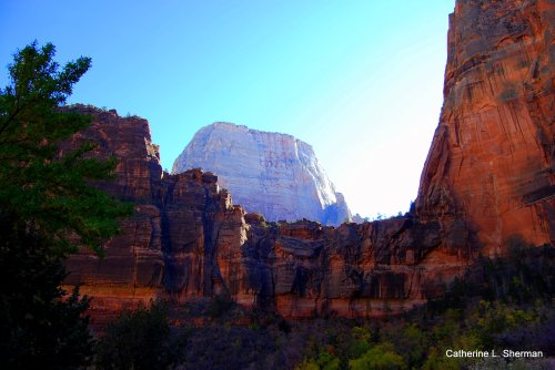 The Great White Throne towers over Zion National Park, Utah.