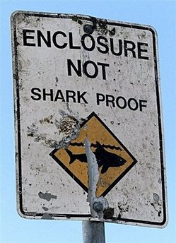 Sign on a Sydney beach.  I don't plan to get wet!  I'll be in the shade sipping a nice, cool drink.  (See story about The Sunshine Vitamin below.)