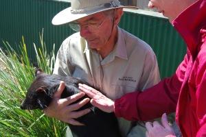 """I'm petting the nice Tasmanian Devil. """"Nice devil, nice devil....."""""""