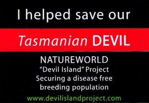 Tasmanian Devil sticker.