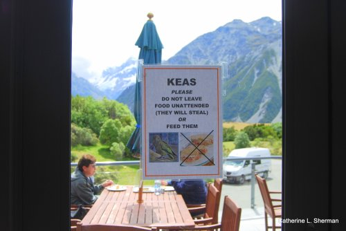 A sign at The Hermitage Hotel at Mt. Cook in New Zealand warns people not to leave their food unattended or a Kea will steal it.