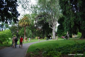 Beautiful, lush parks like this one in Hobart are common in Tasmania.