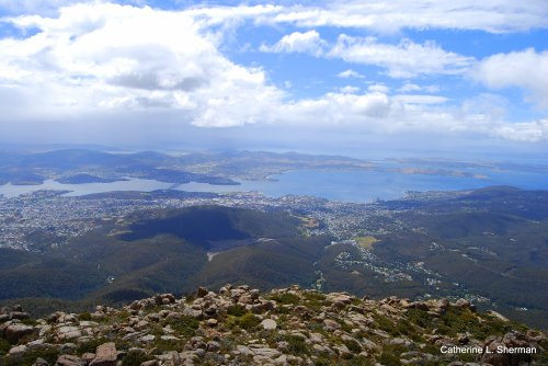 You can get a great view of Hobart from the top of Mt. Wellington, but it's cold and windy even inthe middle of summer. Fortunately, there's a visitor's center.  Hobart was just a small town when Charles Darwin climbed to this site in 1836.