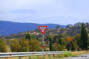 We in the U.S.A. yield, but the Australians give way.  Their signs needs more letters, but it's easier to spell.  Also, not the one lane bridge. We found a lot of those.