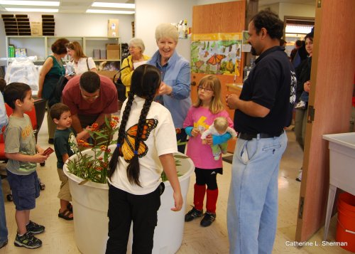 Visitors choose their Monarch Butterfly caterpillars, which you could buy when you bought a milkweed plant.  There were dozens of caterpillars munching away on milkweed in the white tub.