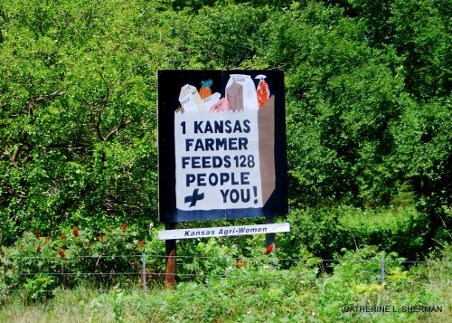 For years I've seen these signs along the highways in Kansas.  This sign is along Interstate 70.