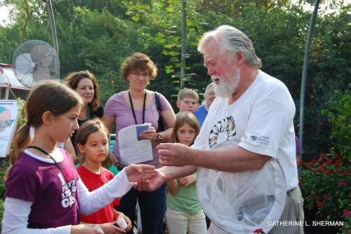 Chip Taylor, right, director of Monarch Watch, shows how to hold a monarch butterfly for tagging.