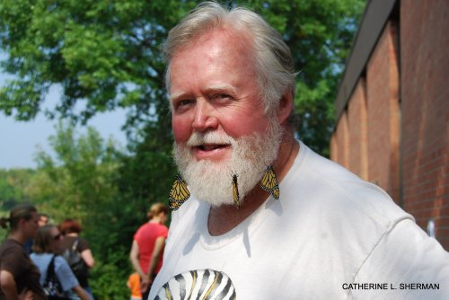 Monarch butterflies harden their wings on CHip Taylor's beard.