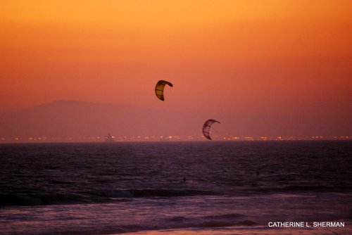 Wind surfers  sail along Huntington Beach at sunset.  In the distance is Catalina Island.