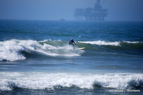 "A surfer rides the waves of the ""dog beach"" in Huntington Beach. In the background is an offshore oil rig."