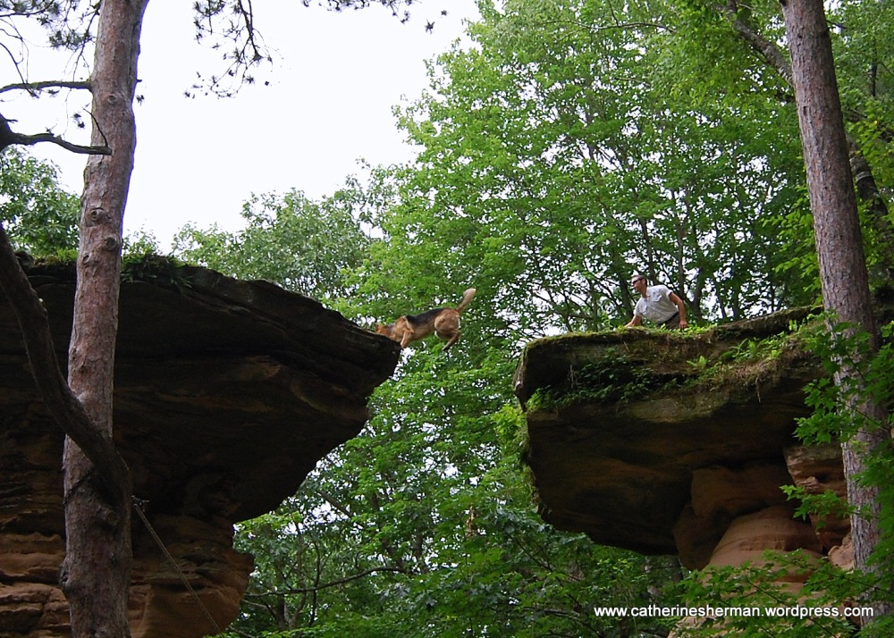 Leap of Faith in the Wisconsin Dells (3/5)