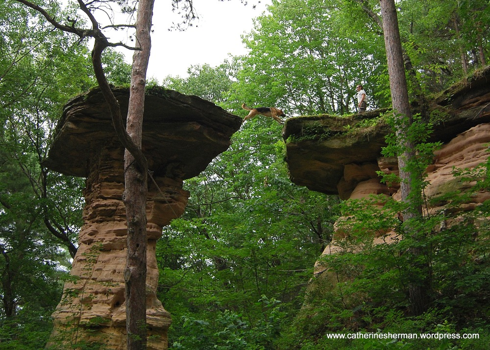 Leap of Faith in the Wisconsin Dells (1/5)