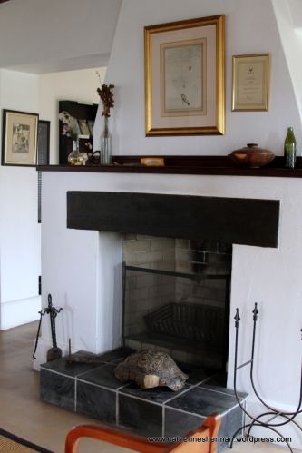 This is the hearth from a farm near Cape Point in South Africa that Charles Darwin visited in May 1836 while on the voyage of the H.M.S. Beagle. The hearth is now in the Buffelsfontein Visitors Center in the the Cape Point area of Table Mountain National Park in South Africa. The Beagle set sail from England in 1931. The Cape's enormous floral and fauna diversity must have fascinated Darwin.