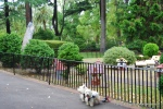 Model Tudor Village, Fitzoy Gardens, Melbourne, Australia.
