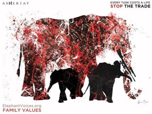 Elephant Family Values