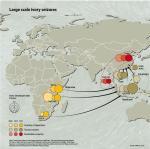 Ivory Seizure Chart