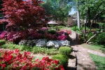 A Garden Along the Azalea Trail