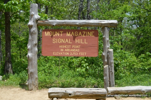 We climbed to Signal Hill on Mount Magazine, the highest point in Arkansas.  It's surrounded by trees so there aren't any panoramic views from this spot.
