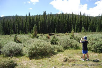 Boy Viewing Moose at Brainard Lake in Colorado