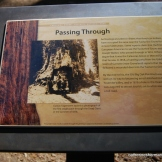 Tuolumne Grove History Sign.
