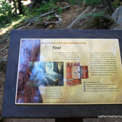 Tuolumne Grove Sign About Fires