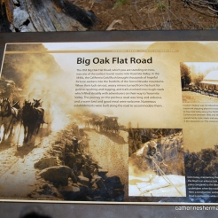 Tuolumne Grove History Sign