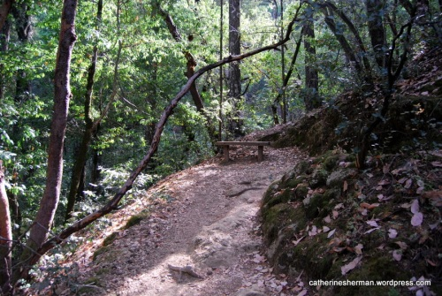 A bench is a welcome sight on the Robert Louis Stevenson Memorial Trail on Mt. Saint Helena in California. The first part of the hike is a series of steep switchbacks.