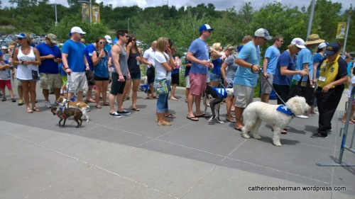 Bark at the Park Registration at Kauffman Stadium for the Kansas City Royals baseball game against the Seattle Mariners on June 22, 2014.