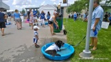 There were plenty of wading pools for dogs to enjoy at Bark at the Park at Kaufman Stadium on June 22, 2014.