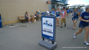 Bark at the Park at Kauffman Stadium during the Kansas City Royals-Seattle Mariners game on June 22, 2014.