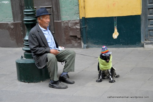 A man and his sportily-dressed dog rest on a street in Lima, Peru.