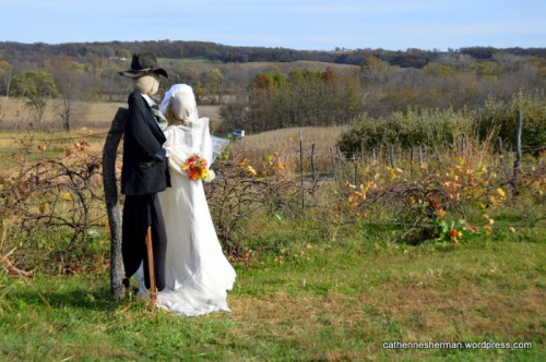 Bride and Groom scarecrows enjoy a beautiful autumn day at Red Barn Farm in Weston, Missouri.