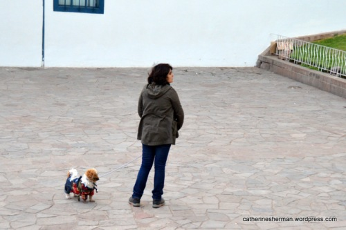 A woman takes her fashionably dressed dog for a walk in Cusco, Peru.