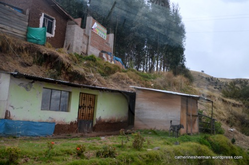 A dog watches cars and trucks go by on the highway from Ollantaytambo to Cusco, Peru. (Taken from my car window.)