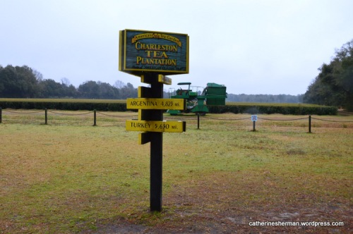 A sign shows the distance to other parts of the world where tea plants are grown.