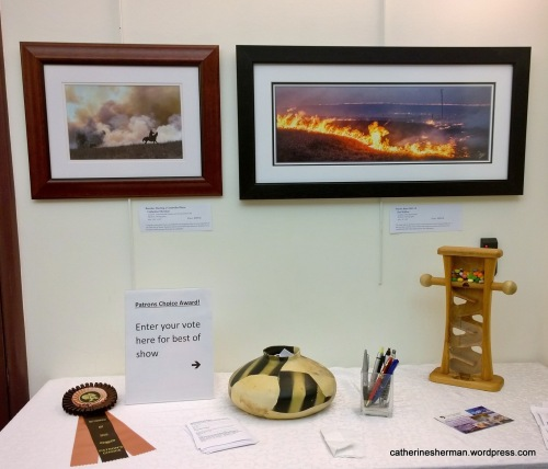 My photo, of a Kansas Rancher Starting a Controlled Burn, is on the left. The photo on the right shows a controlled prairie burn at night. Art patrons can choose a best of show. Voting continues!
